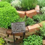Edible Weeds: Herbal Medicine Chest in Your Backyard #kräutergartenbalkon
