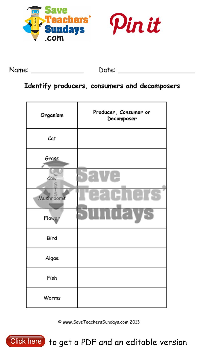 Online activity on identifying producers consumers and – Producers Consumers and Decomposers Worksheet