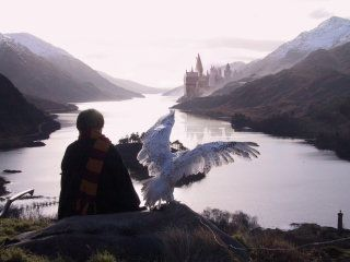 Harry and Hedwig looking at Hogwarts from a disatnce
