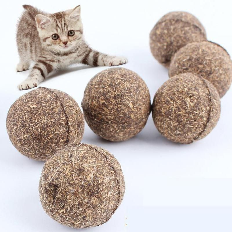 Catnip Cat Playing Ball Cats Kittens Pet Toys Pets