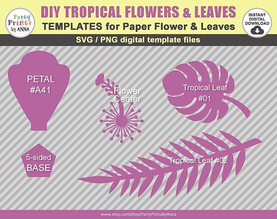 Svg Paper Flower Hibiscus Template Tropical Set Hawaiian Paper