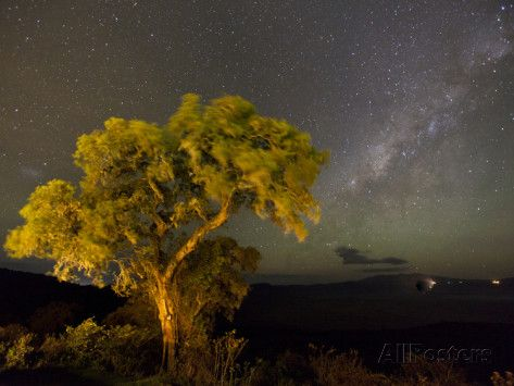 The Milky Way Above the Ngorongoro Crater, Tanzania Photographic Print by Michael Melford at AllPosters.com