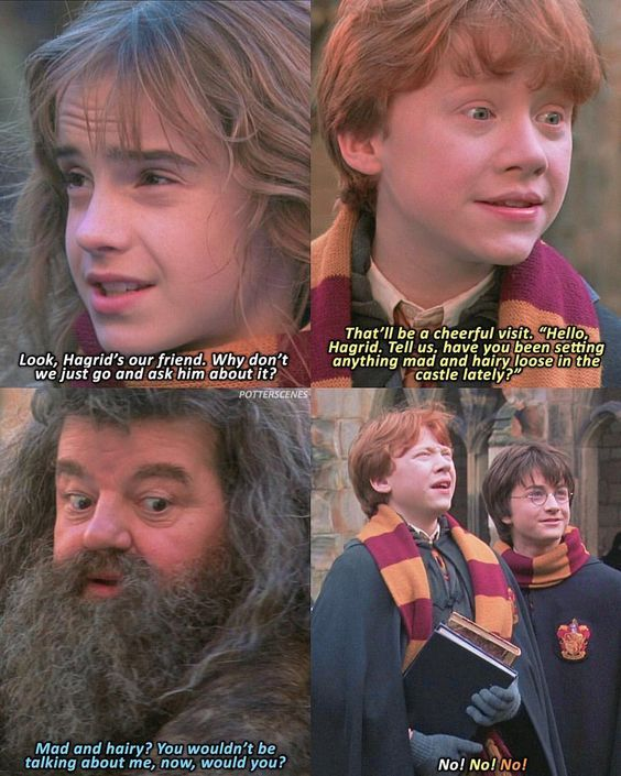 Harry Potter Thoughts On Hagrid Harry Potter Jokes Harry Potter Funny Harry Potter Memes Hilarious