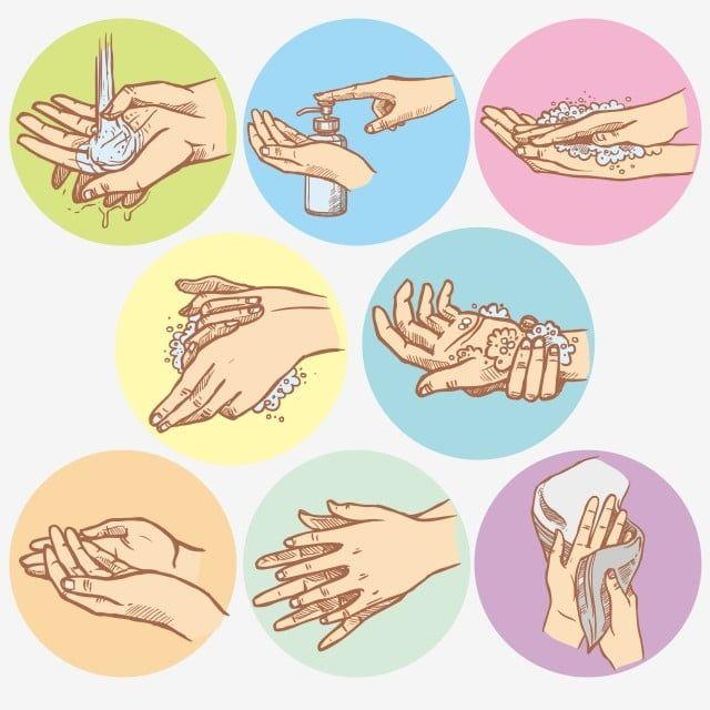 Hands Washing Step Ilustrasi Buku Mencuci Tangan Kartun