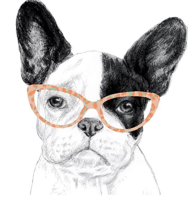 Resultado de imagen para dibujos de bulldogs franceses | French ...