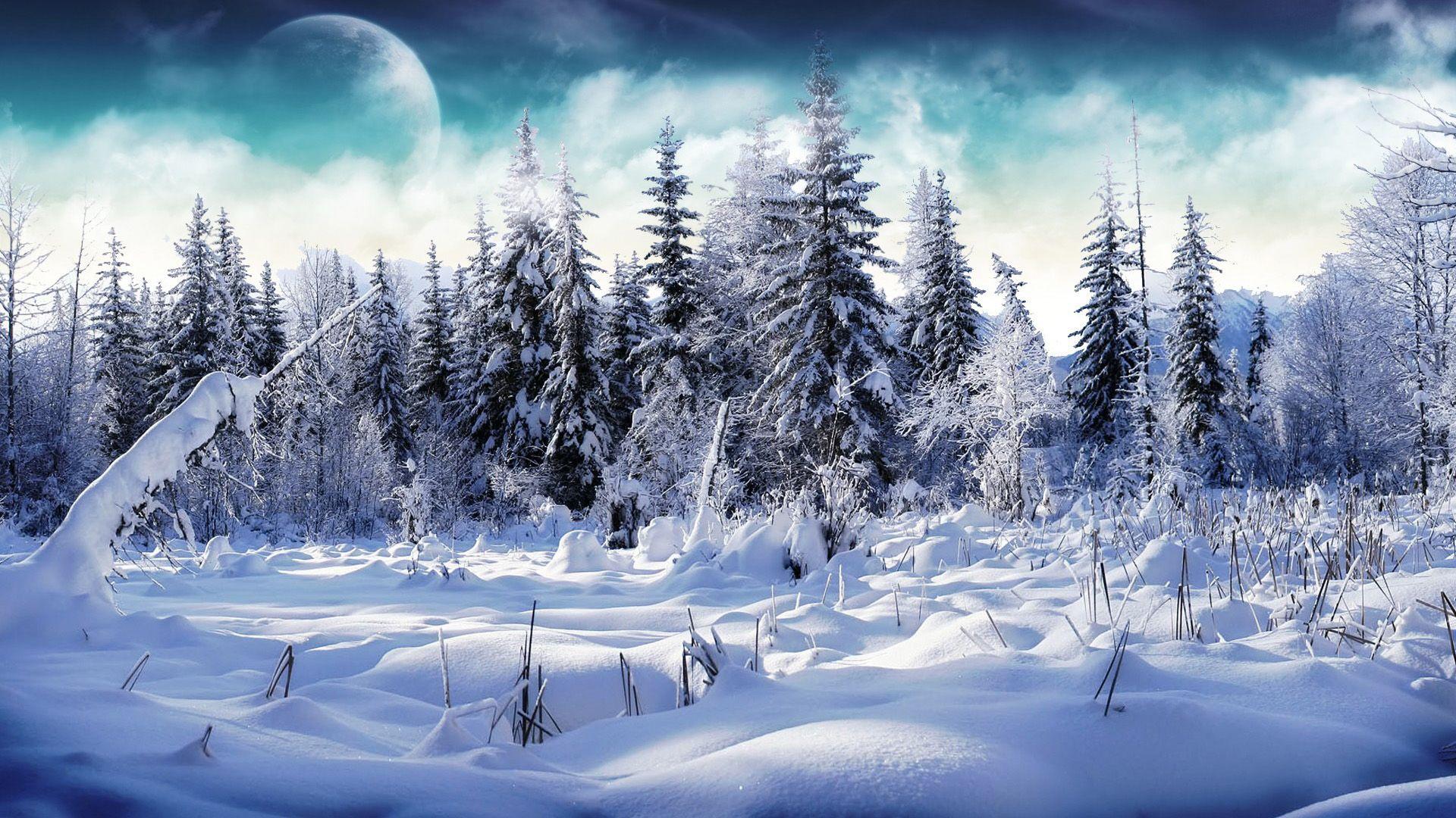 14 paisajes nevados bellos navidad nieve fondos - Paisaje nevado navidad ...