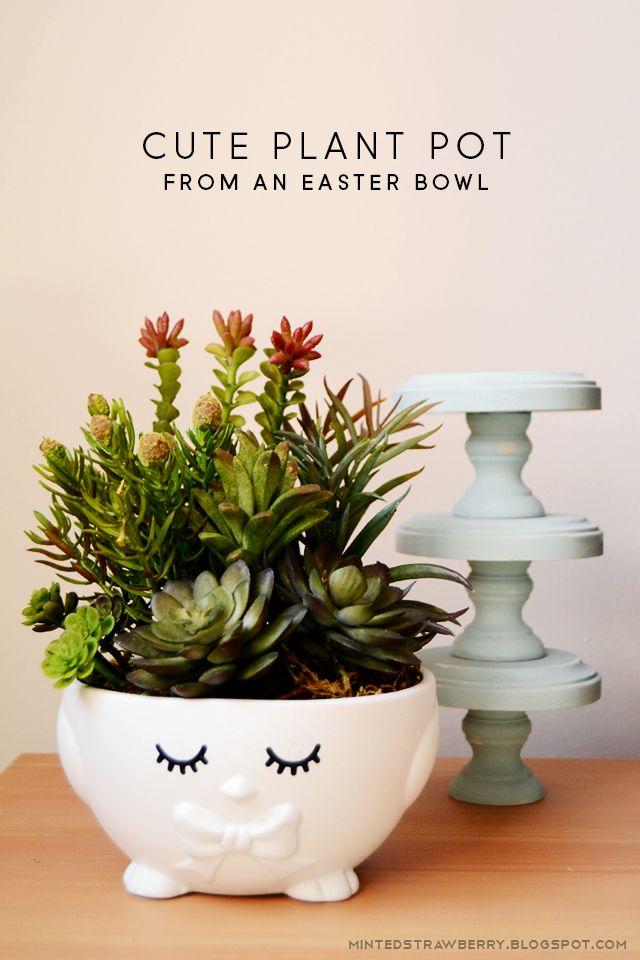 Diy Succulent Plant Pots