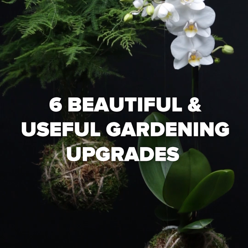 Photo of 6 Beautiful & Useful Gardening Upgrades #gardening #green #plants #DIY
