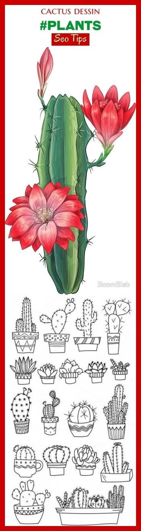 Photo of Cactus drawing #plants #seo #trending. cactus art, cactus plants, cactus drawing, …