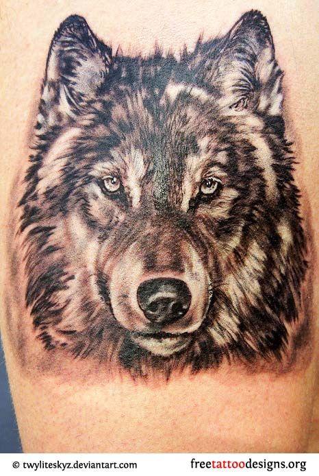 Wolf Head Tattoo Wolf Tattoos Wolf Face Tattoo Animal Tattoos