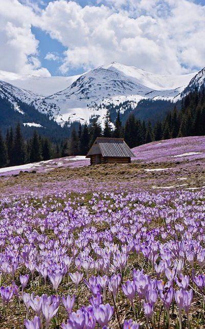 The Tatra Mountains (Poland and Slovakia)