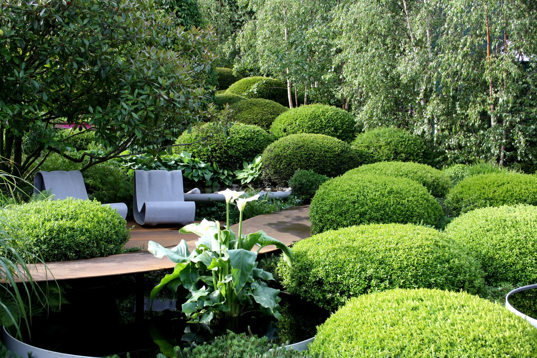 Secluded waterside seating amid boxwoods with nearby birch