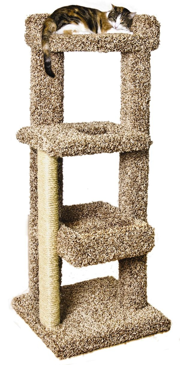 Whisker City Cat Tree : whisker, Least, Percent, PetSmart, Stores, Online, Activity,, Tower,, Petsmart