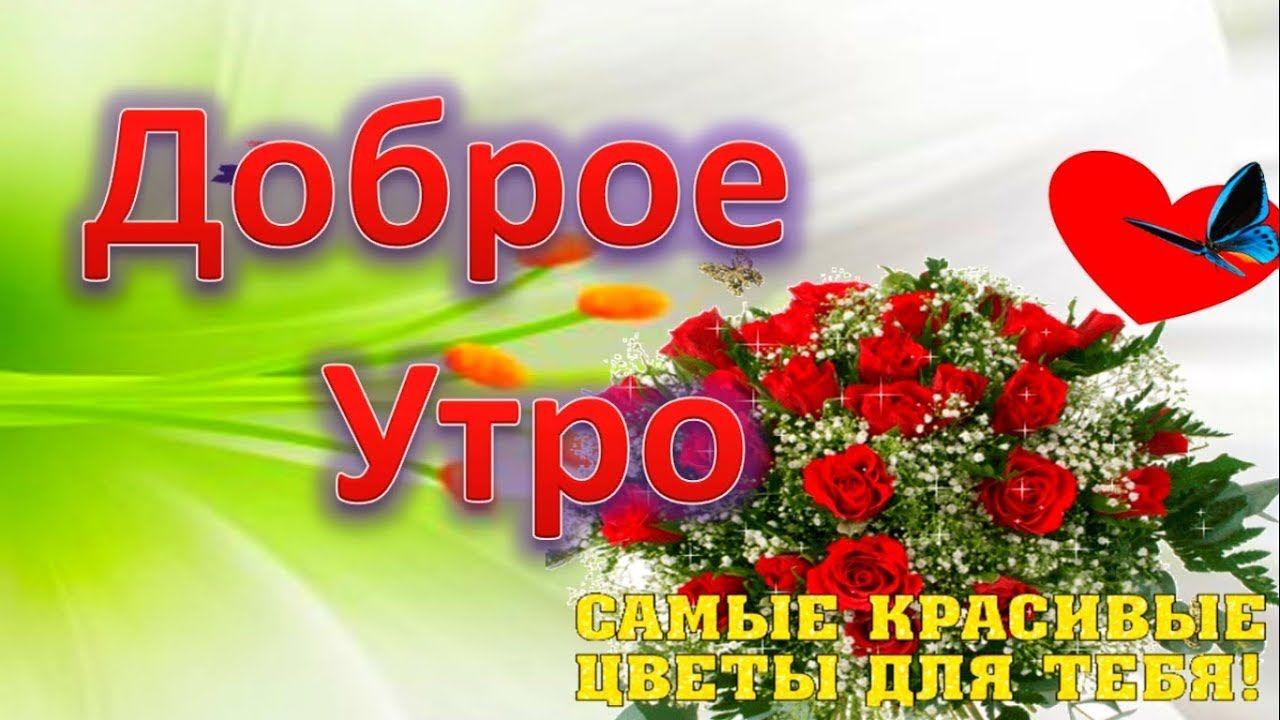 Krasivye Cvety S Dobrym Utrom S Dobrym Utrom Dobroe Utro
