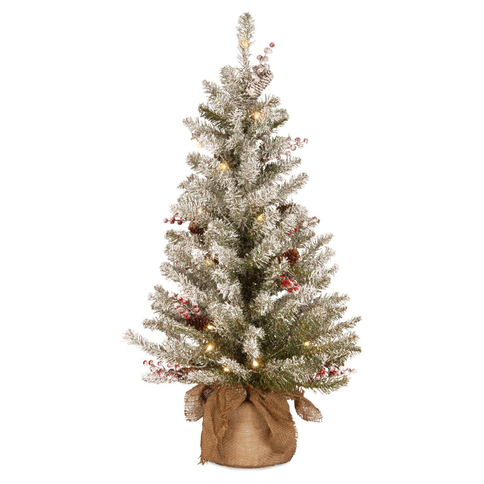 National Tree Company 3 ft. Dunhill Fir Prelit Christmas