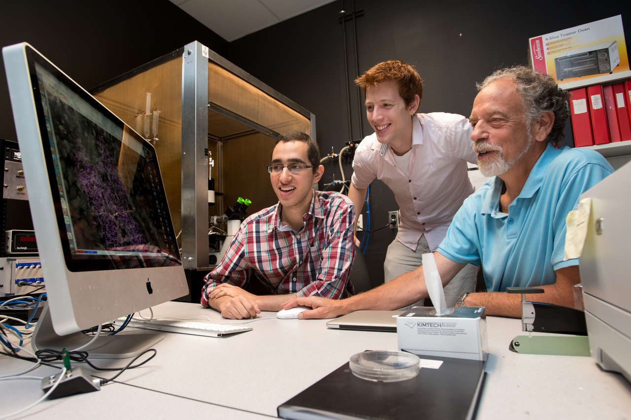 SFU researchers study DNA to find genetic mutation behind ...