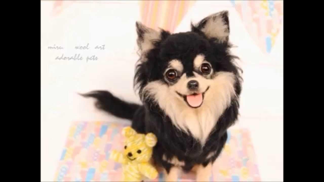 miruの羊毛フェルト リアルな犬猫作品