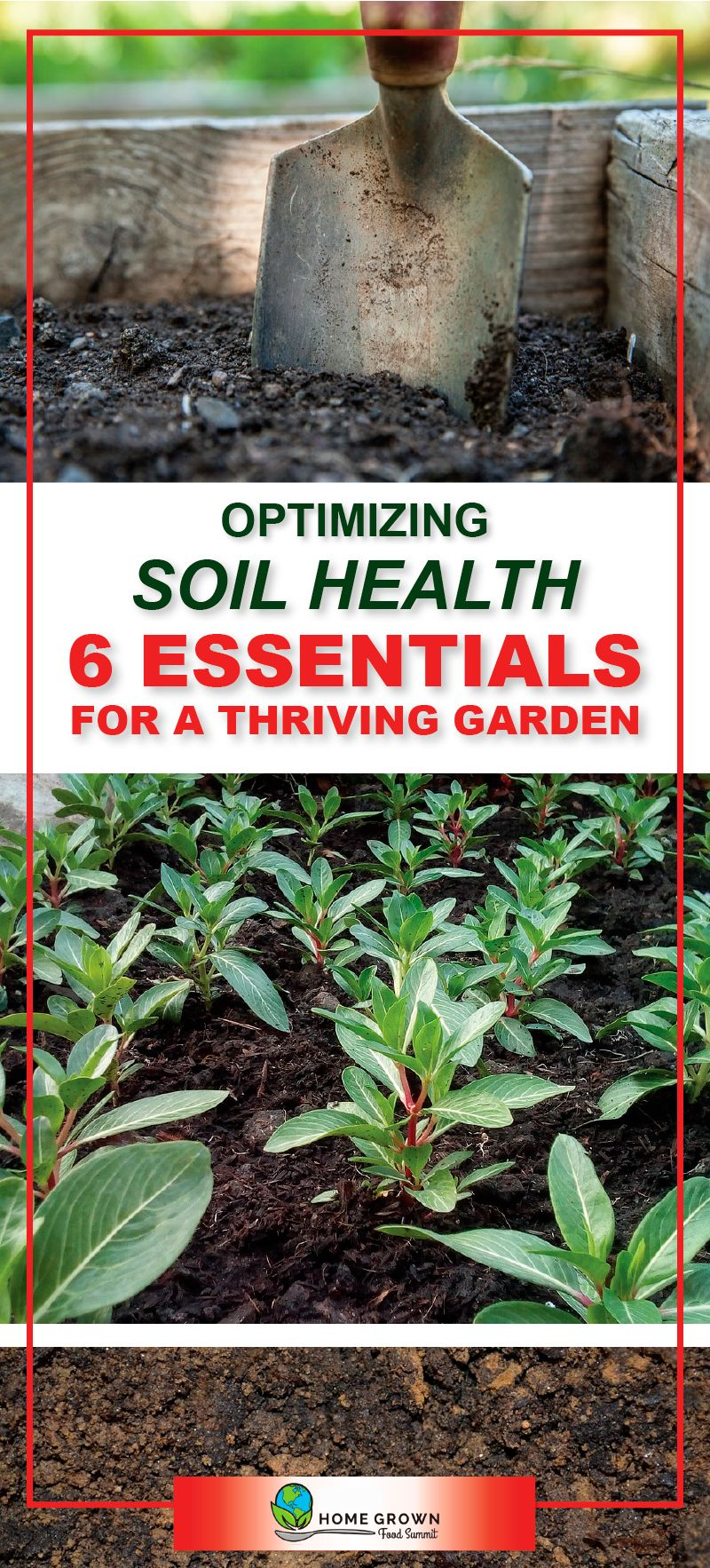 Learn the 6 soil essentials for a thriving garden. Plus, a