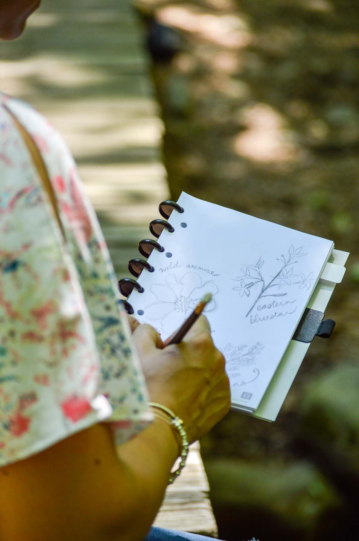 Choose Blank Boundless Paper To Create A Sketchbook With