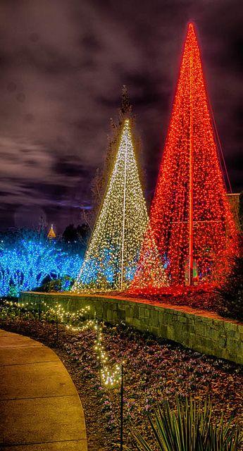 Garden Lights-Holiday Nights