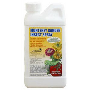 Monterey Spinosad Organic Garden Insect Spray Pint Concentrate Lg6150 By 18 63 New