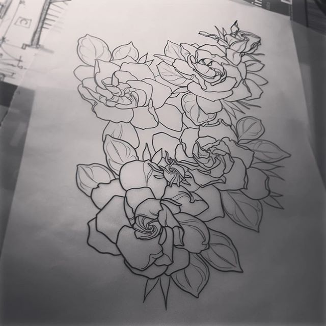 Gardenia Doodle Sketch Today Drawing Tattoo Flower Flowertattoo Flower Sketches Flower Tattoo Drawings Gardenia Tattoo