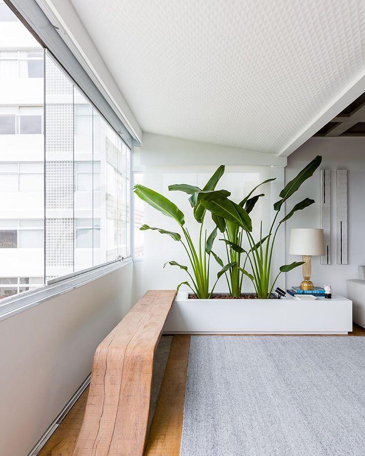Integração banco e jardim 🌿🍃| #suitearquitetos