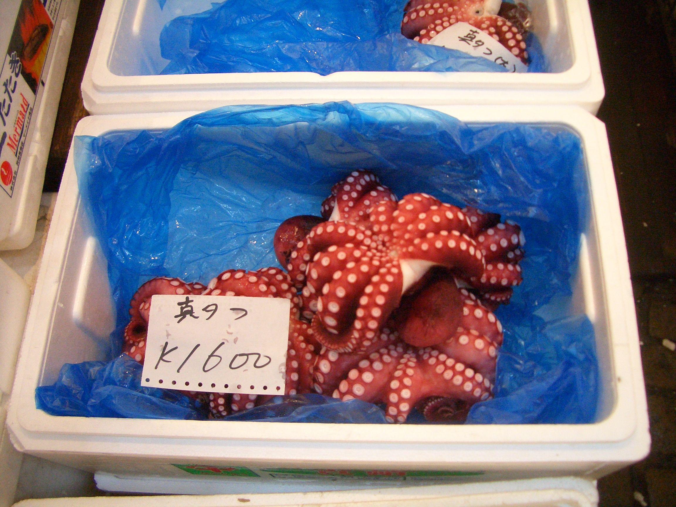 Octopus For Sale Breakfast Food Octopus