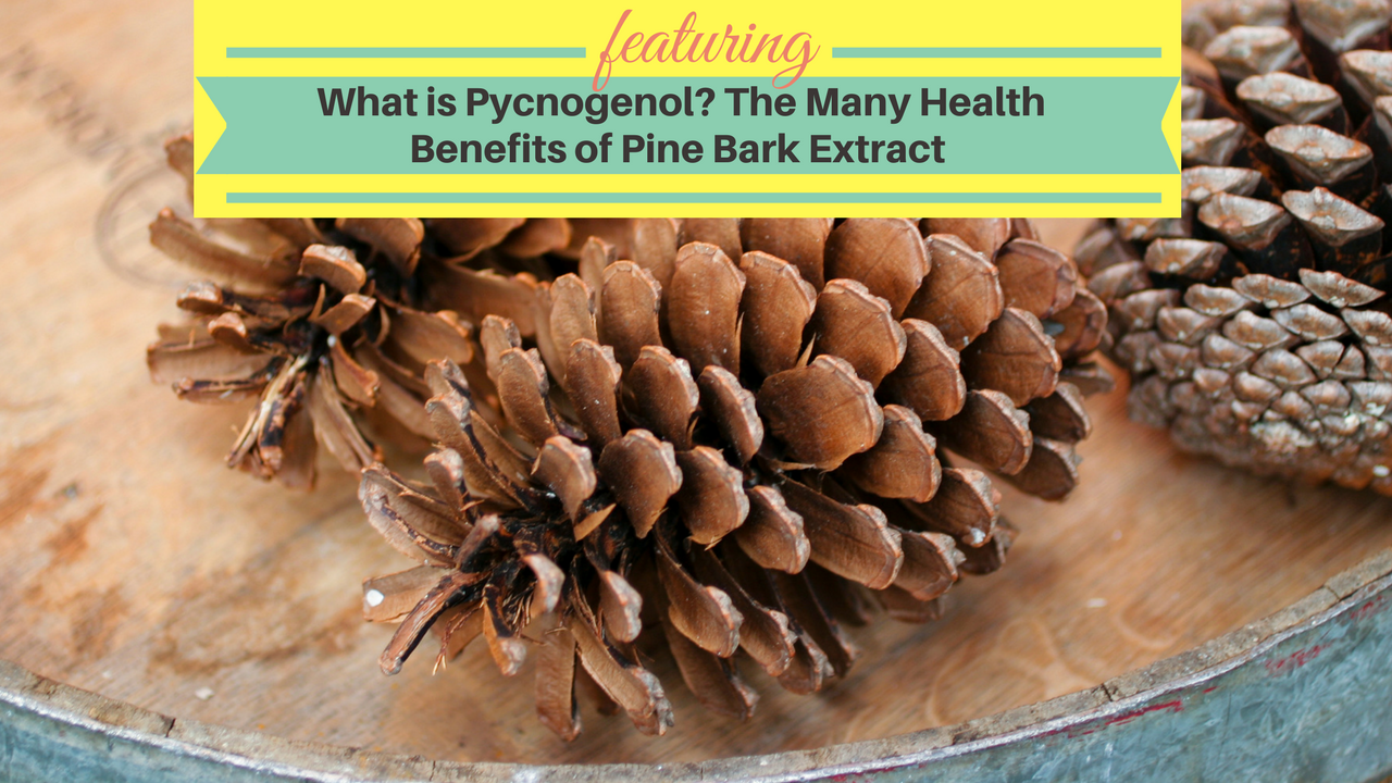 Pycnogenol Is A Supplement Made From The Bark Of The French Maritime