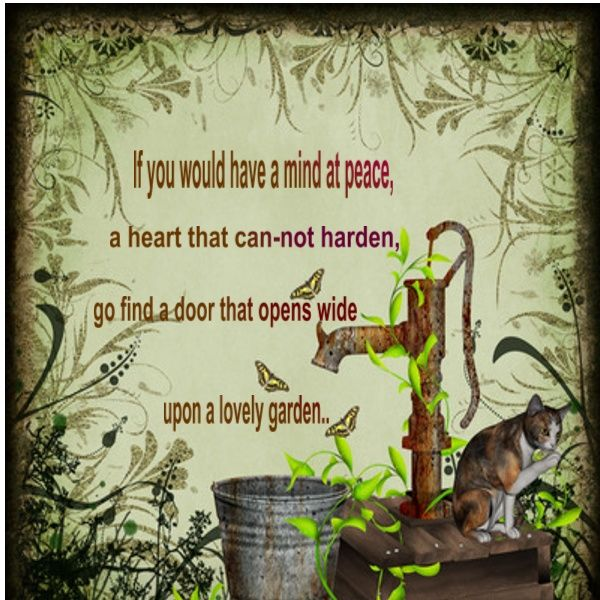 Garden Quotes New Quote Garden  Garden Quote  Garden  Romantic  Pinterest