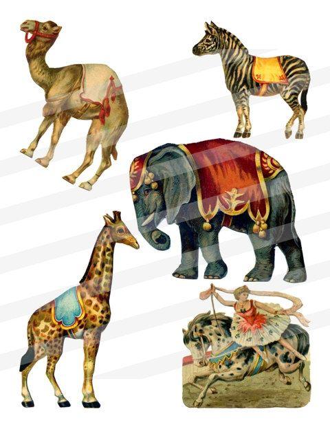 Antique Circus Carnival Animals Clip Art By WildGeeseDigital 300