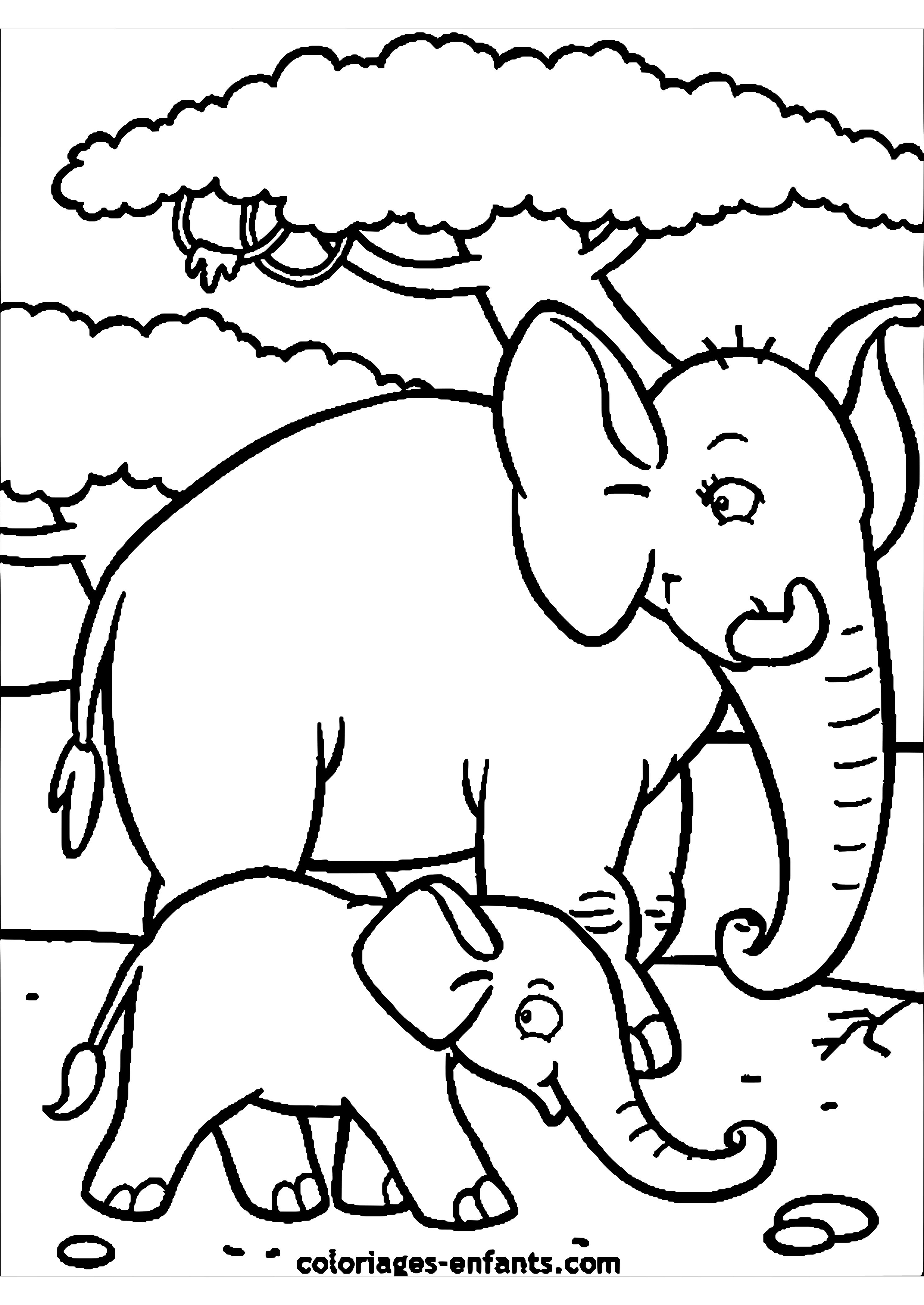 zoo activités maternelle | DIBUJOS PARA IMPRIMIR: :prefix Elefantes ...
