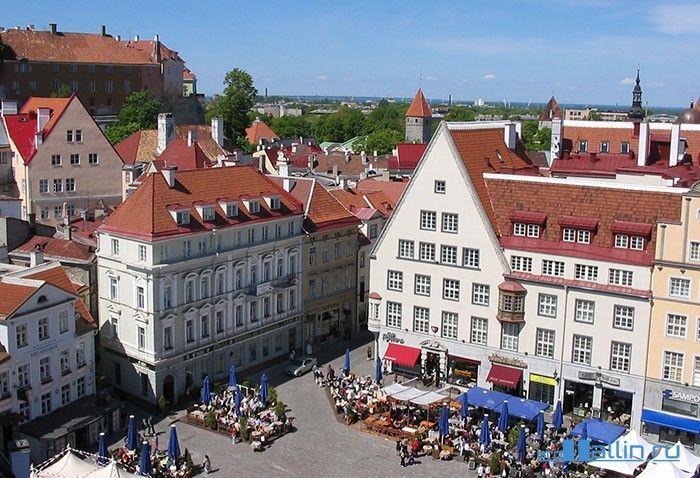 Что посмотреть в Таллине.  Ратушная площадь  Вид на площадь с башни городской Ратуши Таллина
