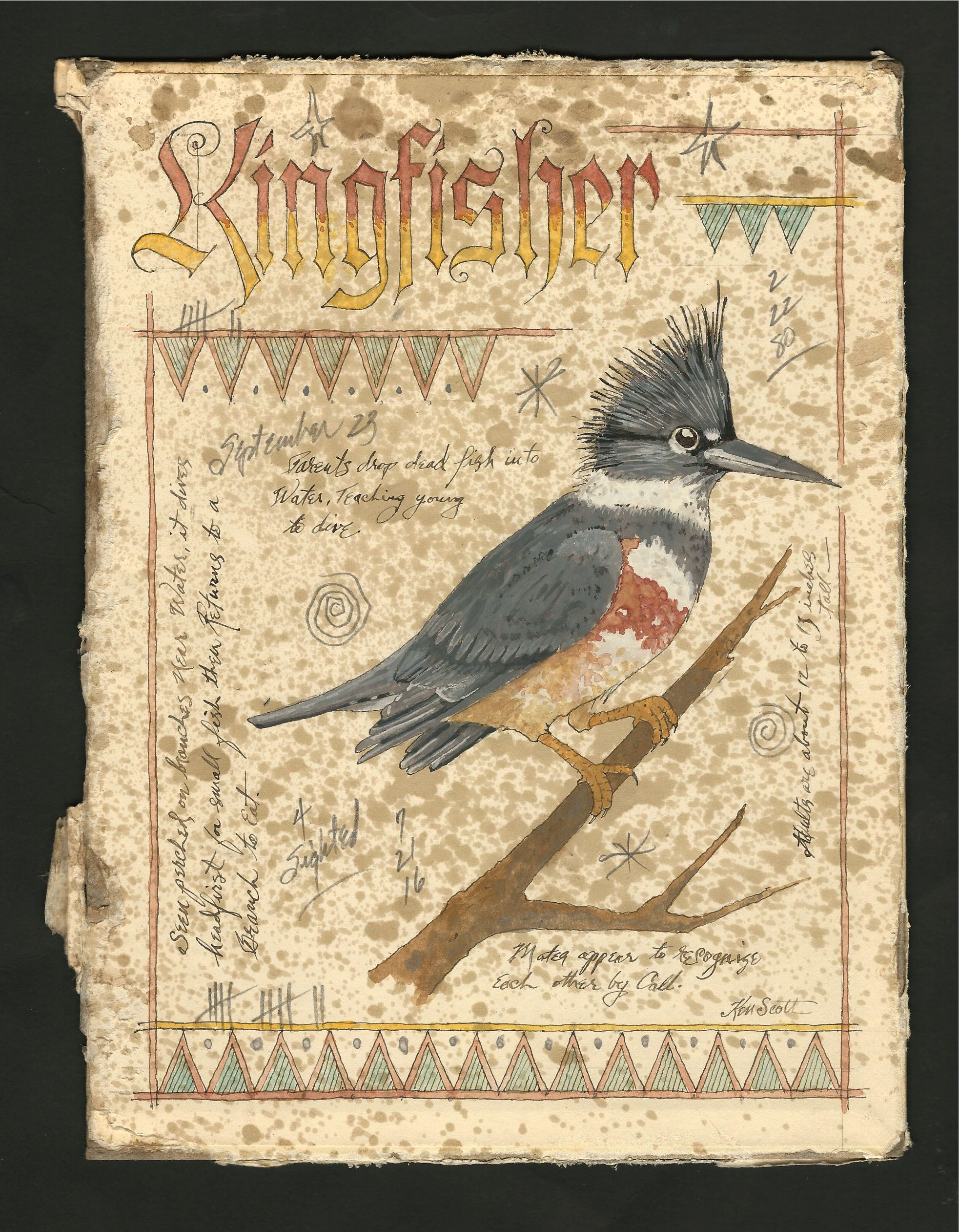 Watercolor books for sale - Kingfisher Ink Watercolor Graphite Marginalia Painted On The Inside Of An Antiqued Book