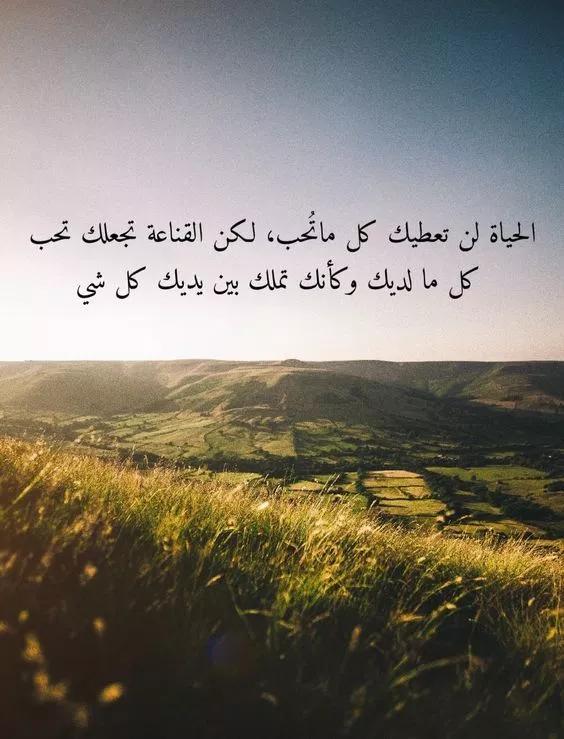 اجمل الصور خلفيات واتس اب 2020 مكتوب عليها كلمات حلوه فوتوجرافر Funny Arabic Quotes Arabic Quotes Wisdom Quotes Life