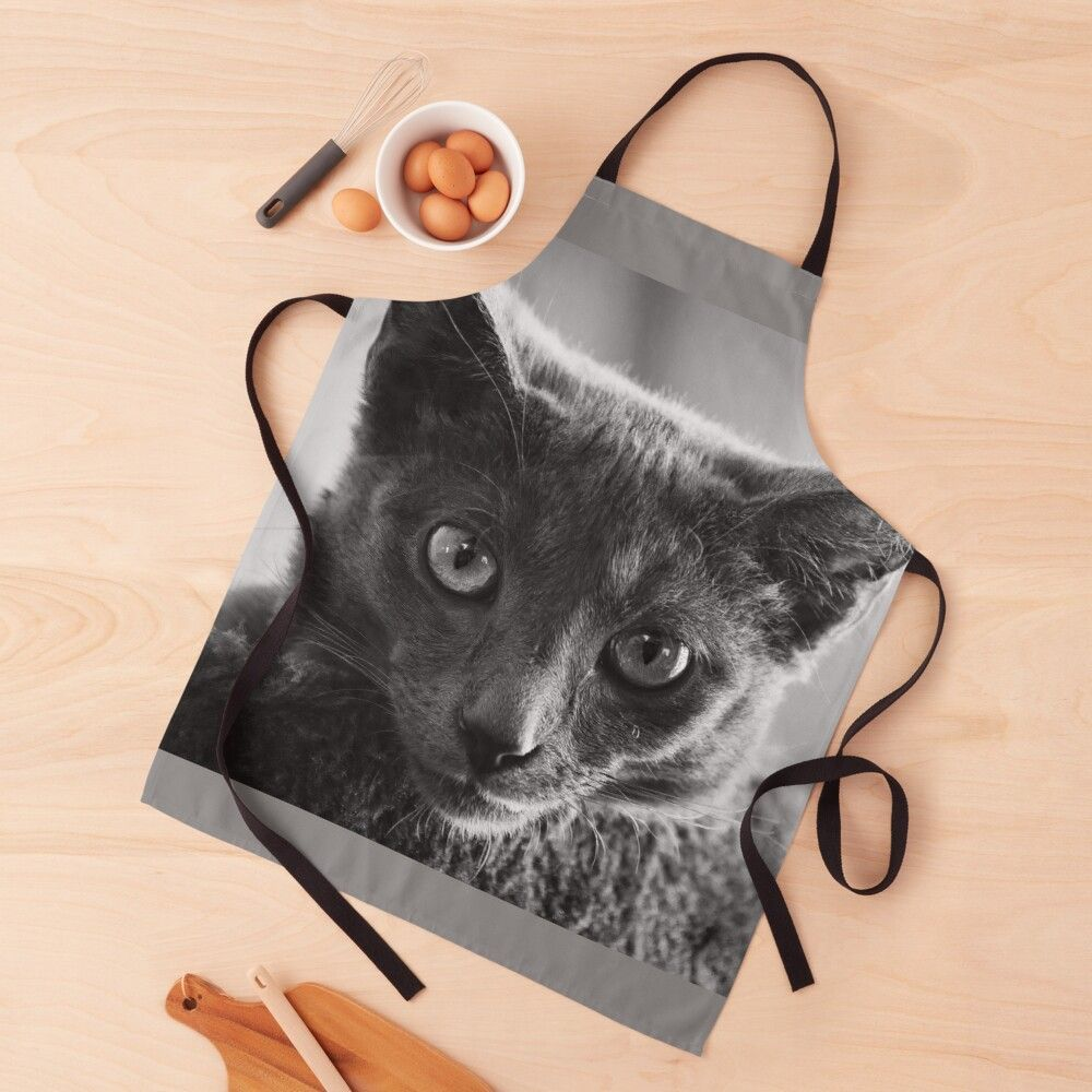 Russian Blue Kitten Portrait 6 Apron By Andrea Anderegg In 2020 Russian Blue Kitten Russian Blue Kitten
