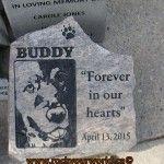 engraved dog memorial portrait stone