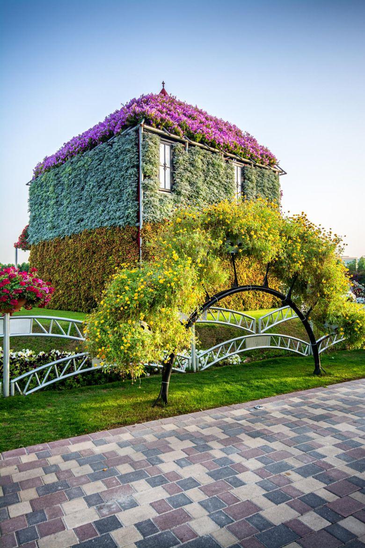 Photograph Mircal Garden by Faisal Shaqsi on 500px (Có