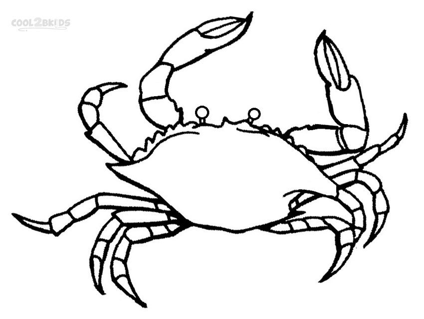 Image result for crab coloring pages