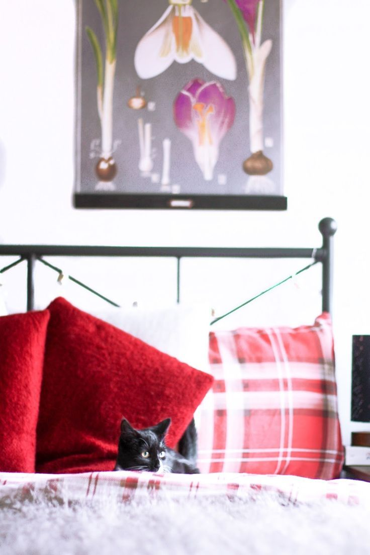 5 ingredients for a cosy bedroom | Cosy bedroom, HEMNES and Cosy