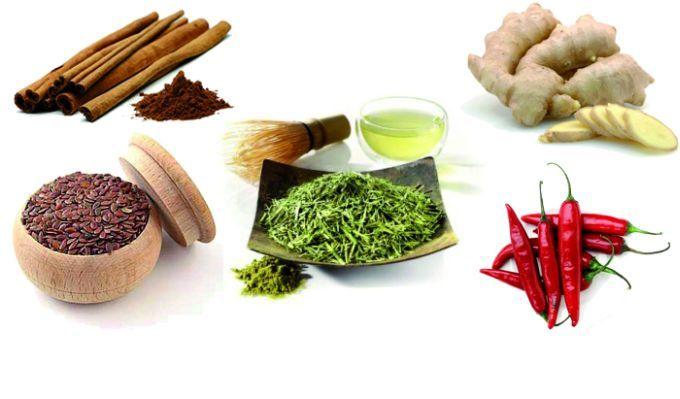 Materia Alimentos Termogenicos Para Auxiliar Na Perda De Peso