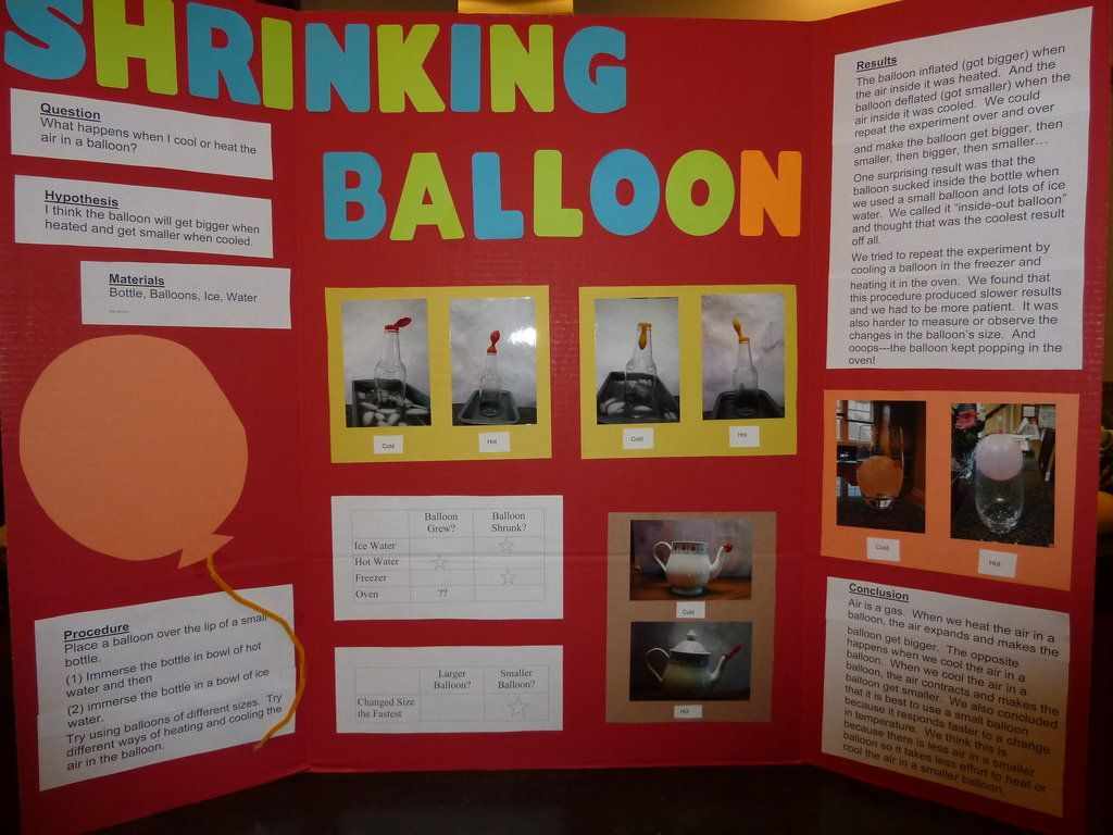 Central School Pto Science Fair Good To Know Pinterest