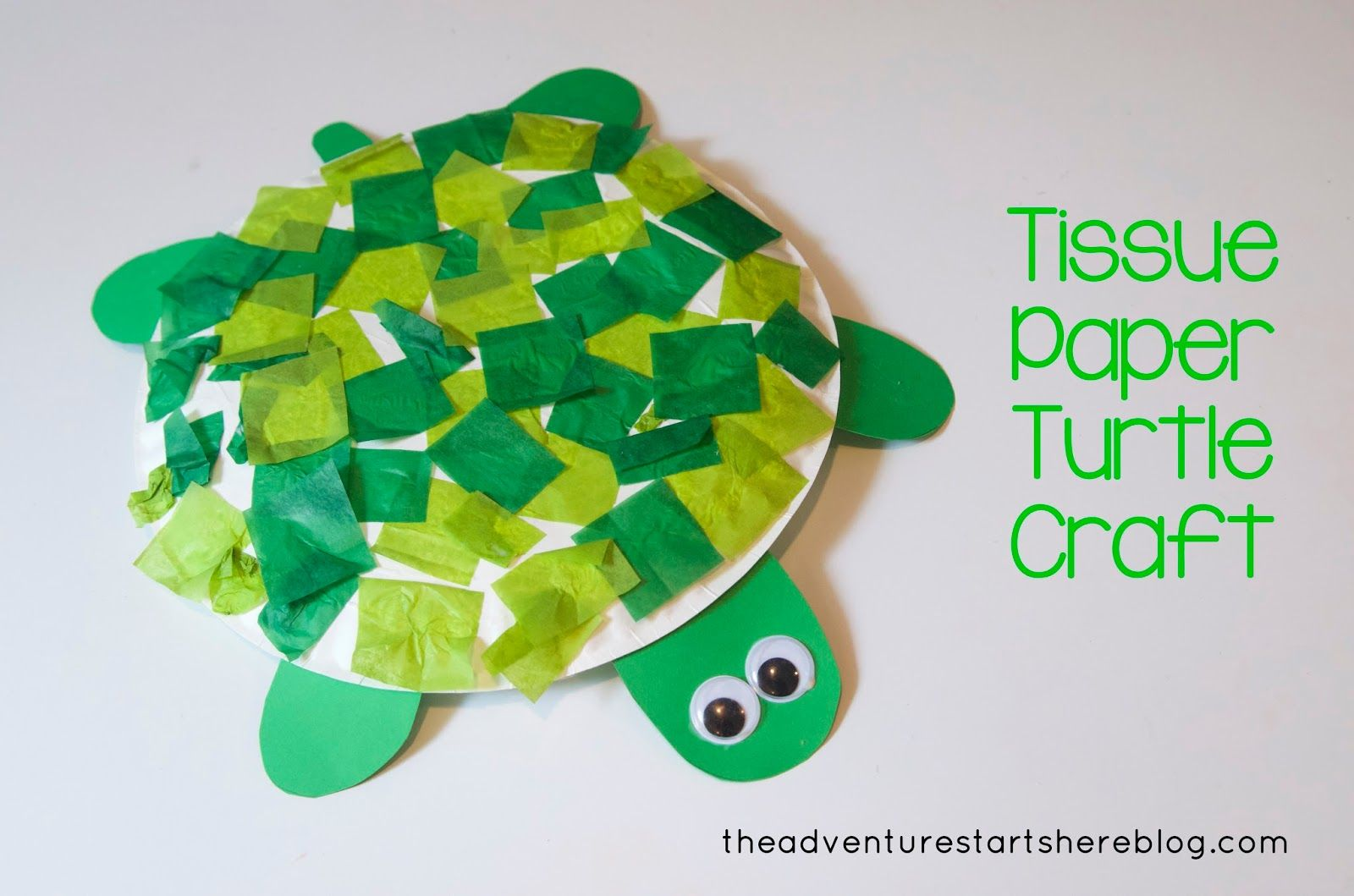 Turtle Craft For Toddlers The Adventure Starts Here Completed