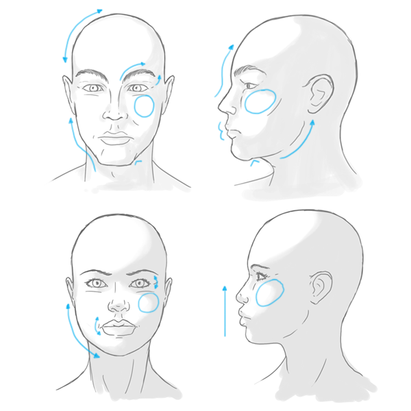 Fantastic breakdown of the differences in a face that make
