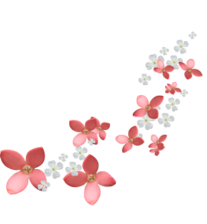 خلفية من حساب A Aisha87 A Aisha87 A Aisha87 خامات خلفيات للتصميم مخطوطه مخطوطات للتصا Flower Frame Leaf Photography Apple Wallpaper Iphone