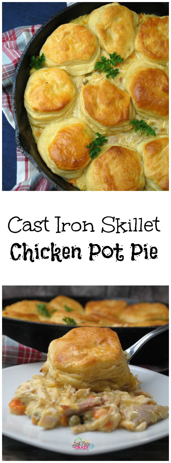 4 Ingredient Cast Iron Skillet Chicken Pot Pie
