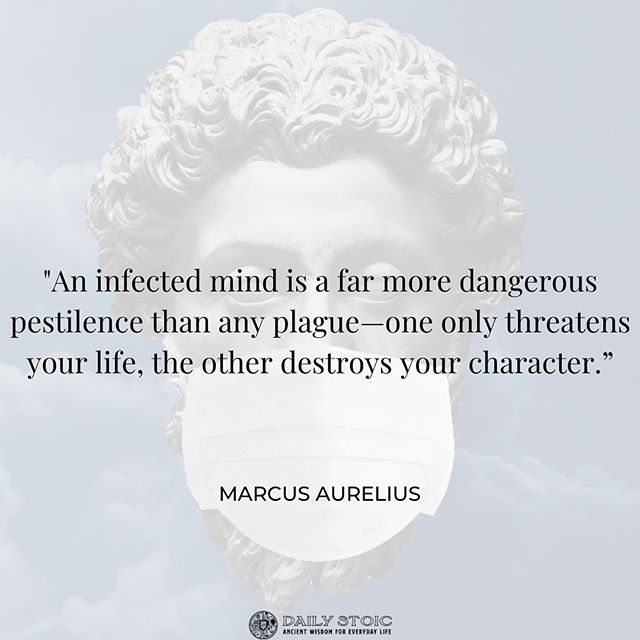 Daily Stoic Stoic Wisdom For Everyday Life Wisdom Quotes Life Cynical Quotes Stoicism Quotes