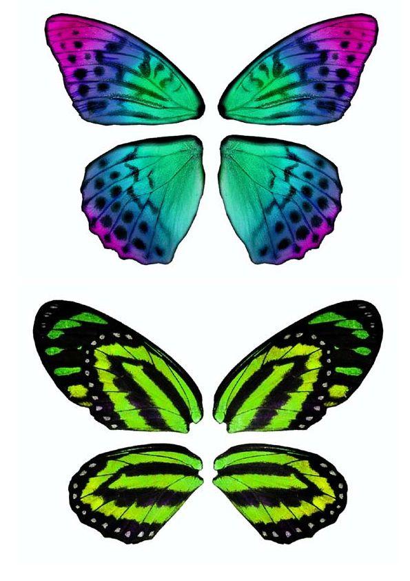 Dibujos Y Plantillas Para Imprimir Alas De Mariposas Para Imprimir 01 Alas De Hada Alas De Hadas Alas De Mariposa Cuadros De Mariposas
