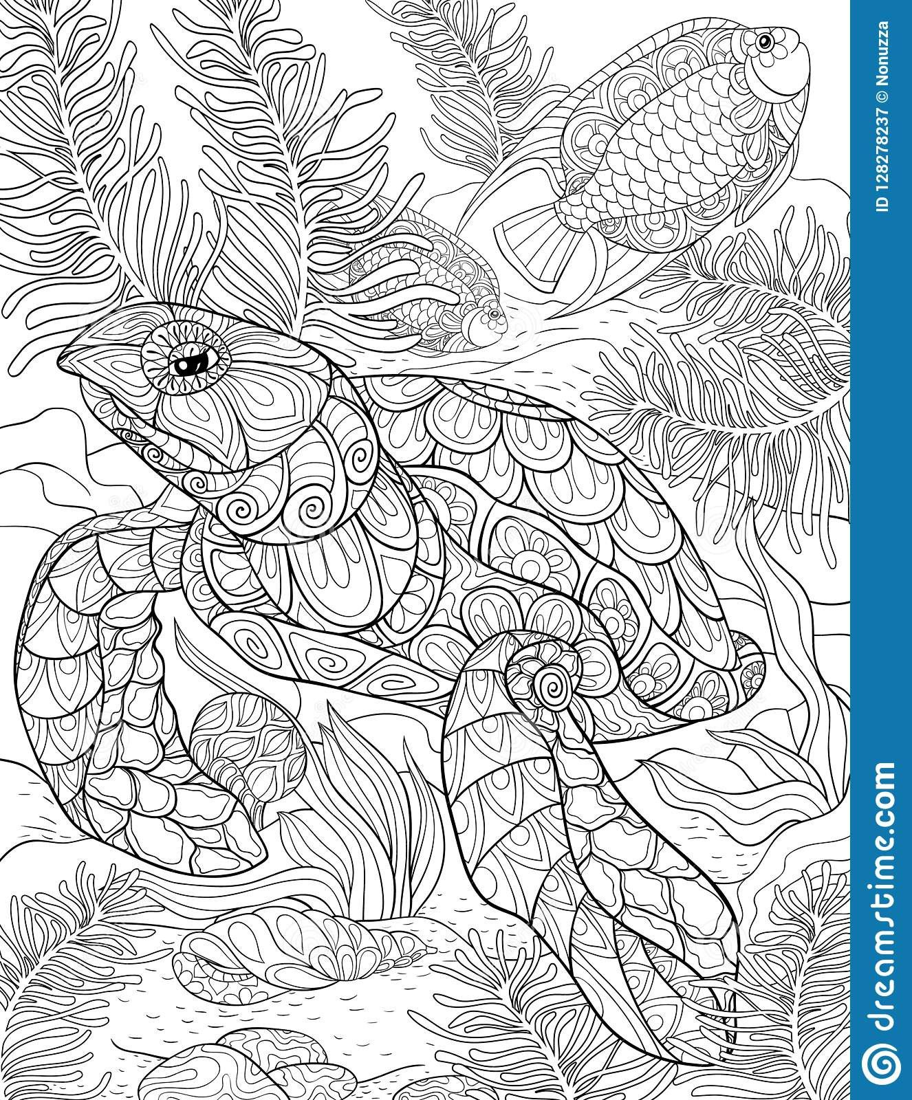 Turtle Coloring Zip Portraits