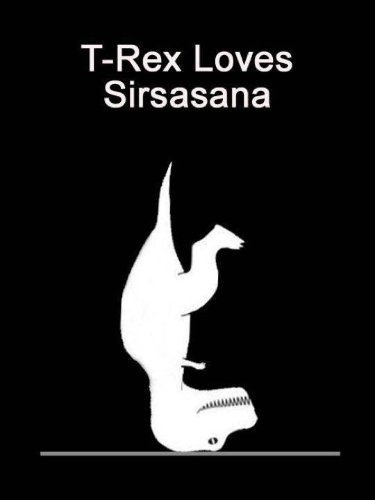 t-rex loves sirsasana